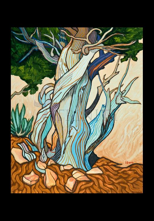 Holy Card - Slept Under A Juniper by L. Williams