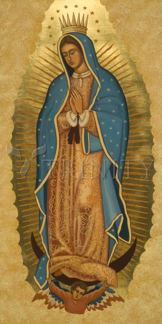 Our Lady of Guadalupe by Joan Cole