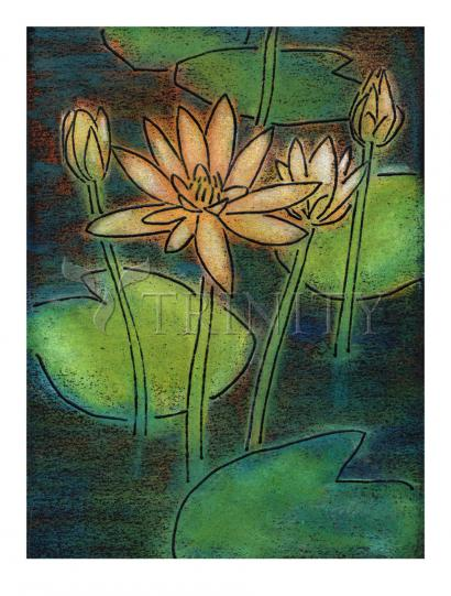 Waterlilies by Julie Lonneman