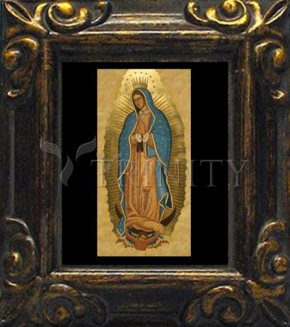 Mini Magnet Frame - Our Lady of Guadalupe by J. Cole