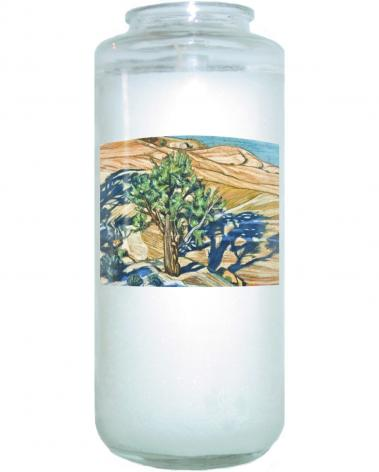 Devotional Candle - Tree Shadow on Slickrock by L. Williams