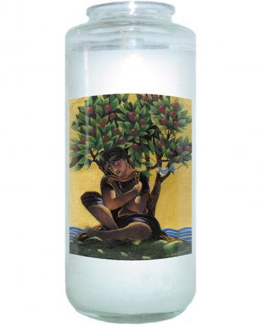 Devotional Candle - Son of David by M. McGrath