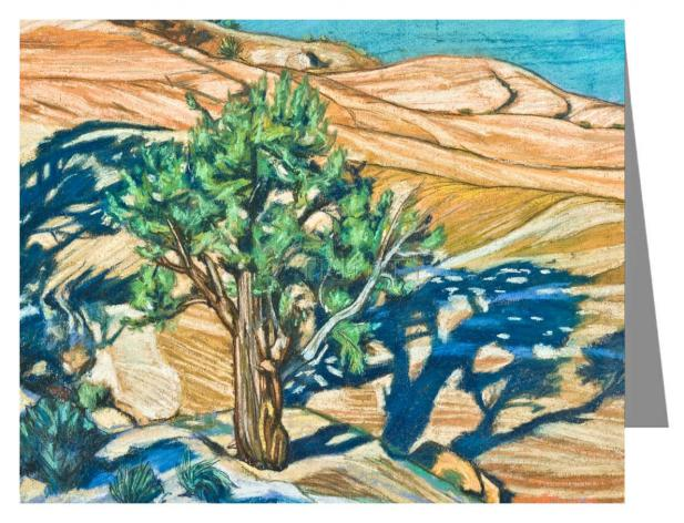 Custom Text Note Card - Tree Shadow on Slickrock by L. Williams